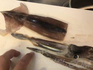 イカの胴と肝
